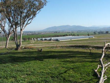 ACMF Breeder-Farm-005